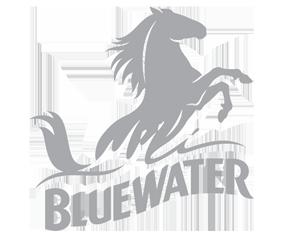 Bluewater logo