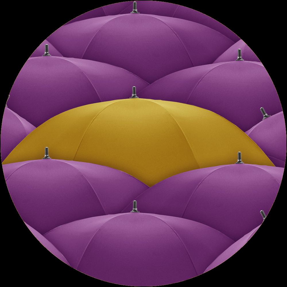 Purple and yellow umbrellas