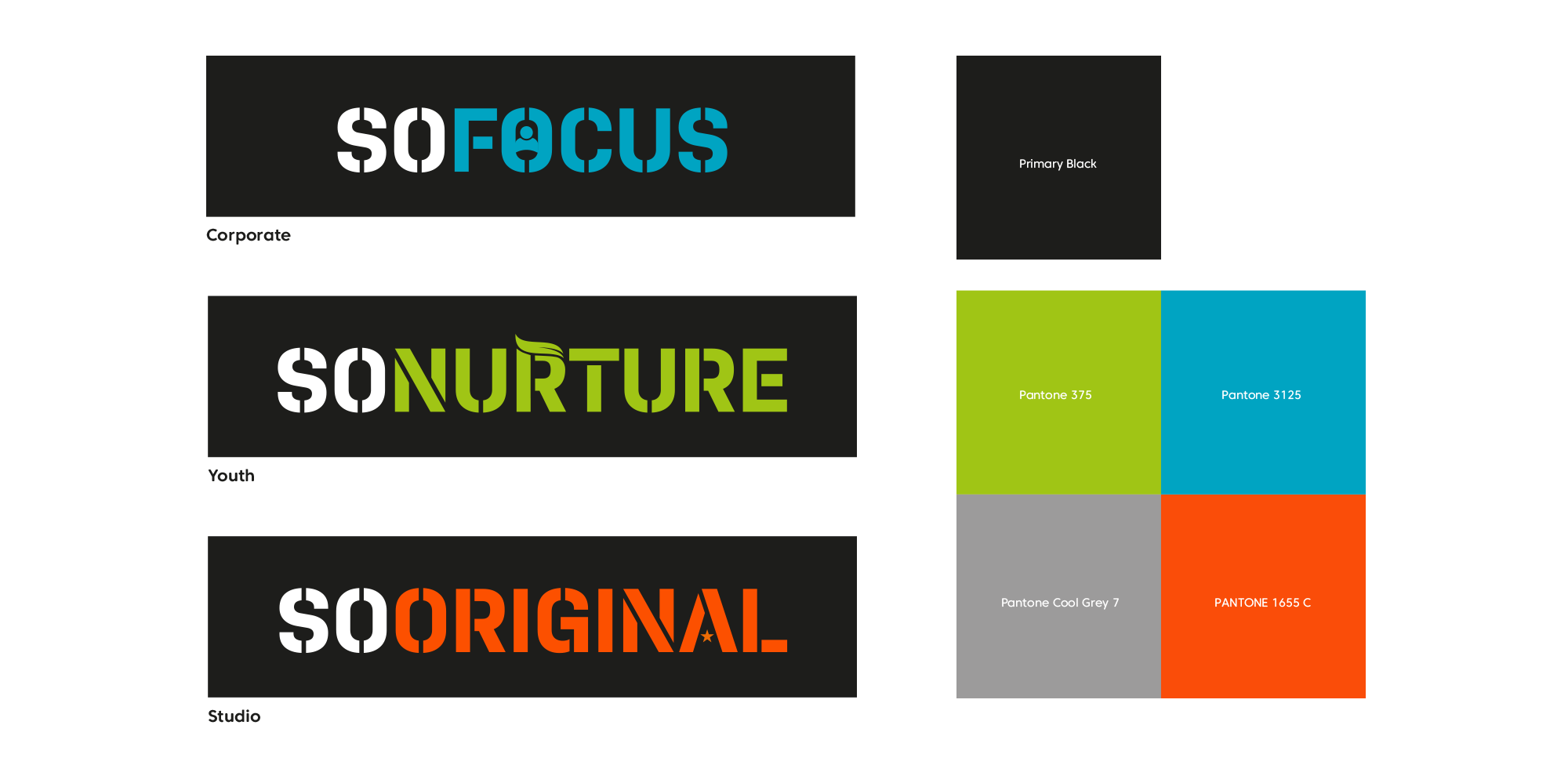 Examples of So Health branding and logos