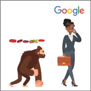 Google evolution concept
